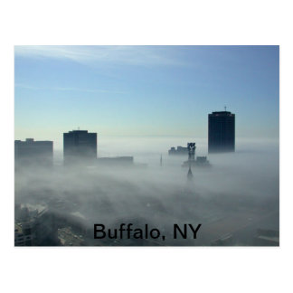 Beautiful Buffalo, NY Postcard