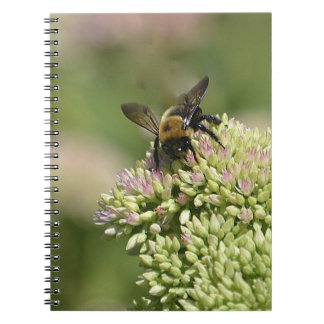 Beautiful Bumblebee Spiral Note Book