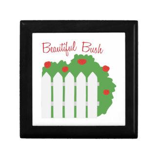 Beautiful Bush Jewelry Box