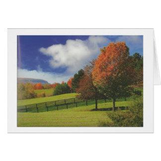 Beautiful Canada Landscape Niagara: LOWPRICE Gift Greeting Card