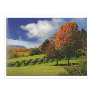 Beautiful Canada Landscape Niagara: LOWPRICE Gift Postcard