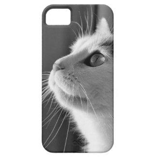 Beautiful Cat Mobile Phone Case