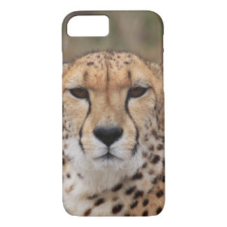 Beautiful cheetah portrait iPhone 7 case
