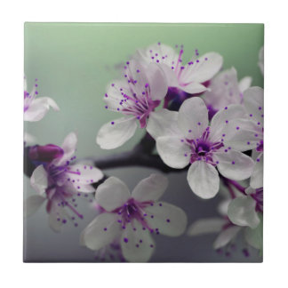 Beautiful Cherry Blossom Ceramic Tile