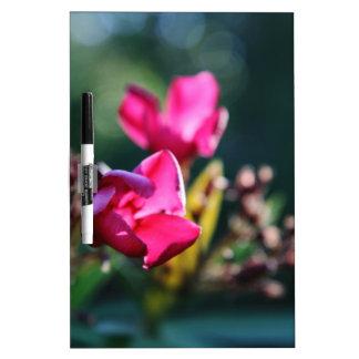 Beautiful Cherry Blossom Design Dry-Erase Board