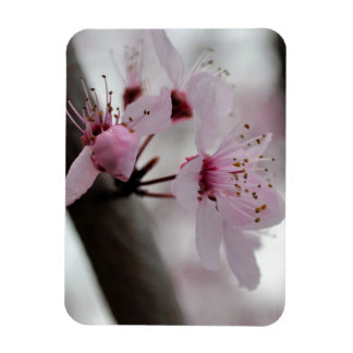 Beautiful Cherry Blossom Flowers Flexible Magnet