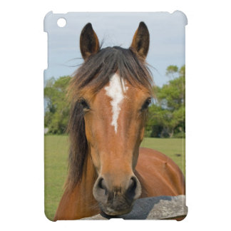 Beautiful chestnut horse head photo ipad mini case