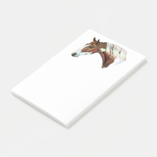 Beautiful Chestnut Tovero Paint Horse Post-it Notes