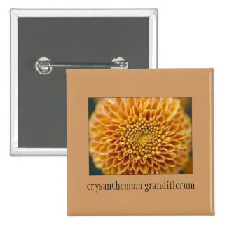 Beautiful Chrysanthemum Floral Button