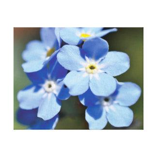Beautiful close-up photo blue flowers canvas print