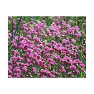 Beautiful close-up photo pink flowers & water canvas print