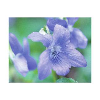 Beautiful close-up photo purple flower on green canvas print