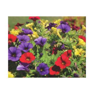 Beautiful close-up photo red purple yellow flowers canvas print