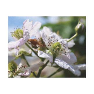 Beautiful close-up photo white blossom canvas print