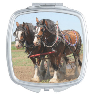 Beautiful clydesdale horses ploughing vanity mirror
