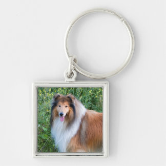 Beautiful Collie dog portrait keychain, gift idea Keychain