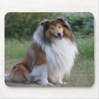 Beautiful Collie dog portrait mousepad, gift idea Mouse Pad