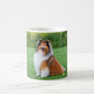 Beautiful Collie dog portrait mug, gift idea Coffee Mug