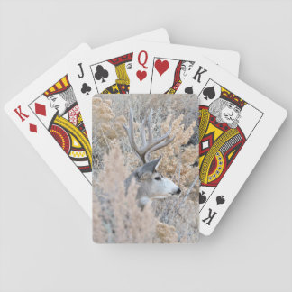 Beautiful Colorado Buck Playing Cards