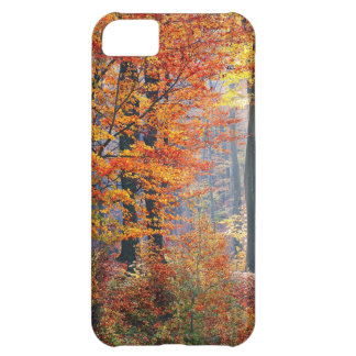 Beautiful colorful autumn fall forest sunbeams case for iPhone 5C