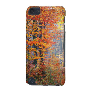 Beautiful colorful autumn fall forest sunbeams iPod touch 5G case