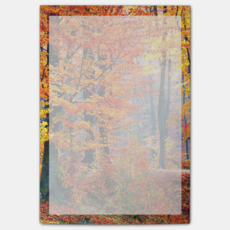 Beautiful colorful autumn fall forest sunbeams post-it notes