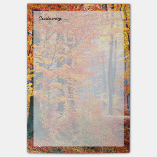 Beautiful colorful autumn fall forest sunbeams post-it® notes