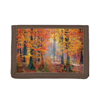 Beautiful colorful autumn forest sunbeams tri-fold wallets