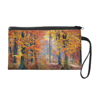Beautiful colorful autumn forest sunbeams wristlets