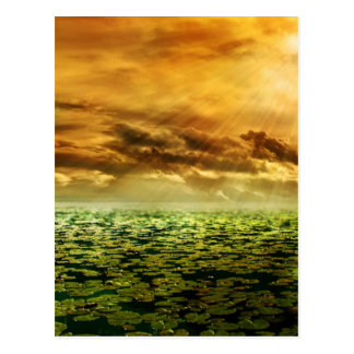 Beautiful colorful pond scenery postcard