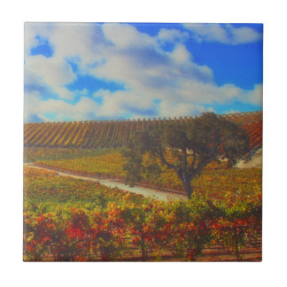 Beautiful Colorful Vineyard Art Tile
