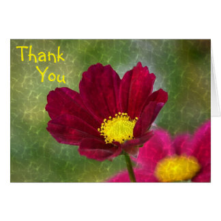 Beautiful Cosmos Thank You Card