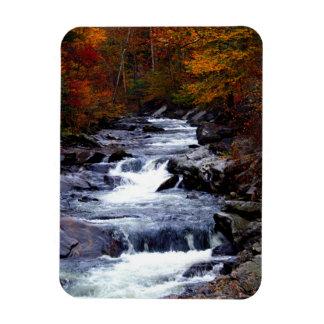 Beautiful creek nature scenery magnet