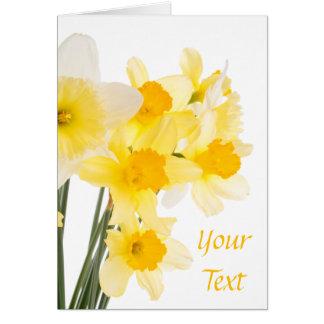 Beautiful Daffodils Greeting Card