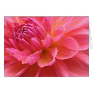 Beautiful Dahlia Card