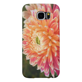 Beautiful Dahlia Phone Case