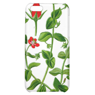 Beautiful Dainty red spring flower iPhone 5C Cases
