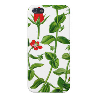 Beautiful Dainty red spring flower Case For iPhone 5