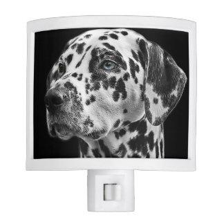 Beautiful Dalmatian dog portrait Night Lites