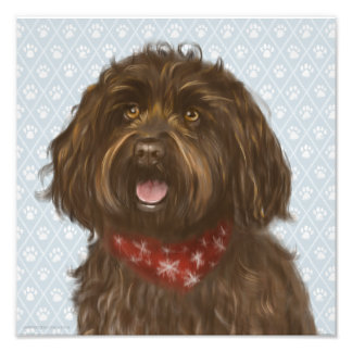Beautiful Darcey Labradoodle Love Photo Print
