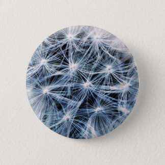 beautiful delicate dandelion flower photograph 2 inch round button