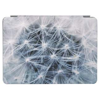 beautiful delicate dandelion flower photograph iPad air cover
