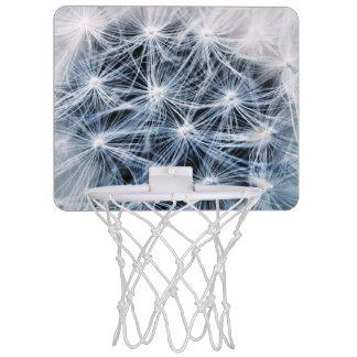 beautiful delicate dandelion flower photograph mini basketball hoop