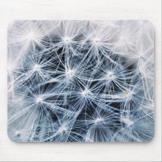 beautiful delicate dandelion flower photograph mouse pad