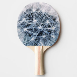 beautiful delicate dandelion flower photograph ping pong paddle