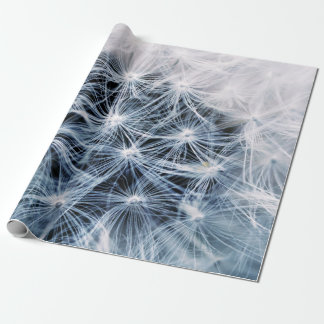 beautiful delicate dandelion flower photograph wrapping paper
