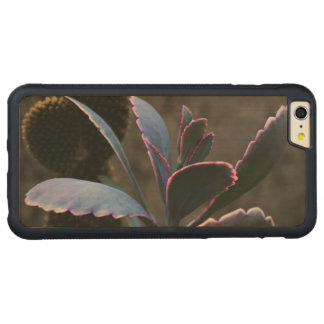 Beautiful Desert Plant Carved® Maple iPhone 6 Plus Bumper Case