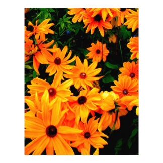 Beautiful display or orange and yellow flowers letterhead design