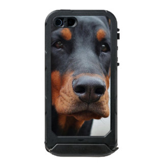 Beautiful Doberman Pinscher Incipio ATLAS ID™ iPhone 5 Case