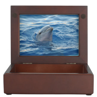 Beautiful Dolphin Memory Boxes